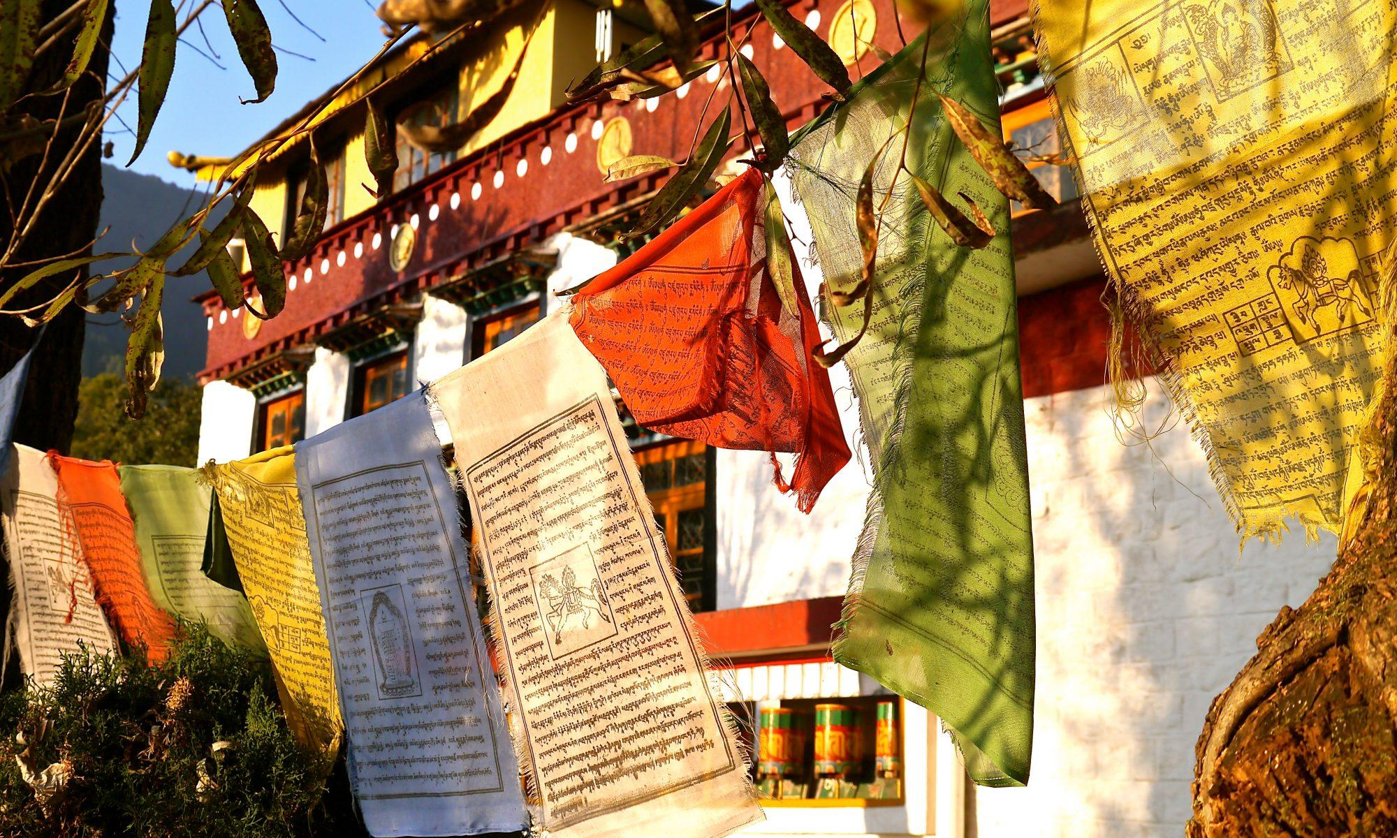 1_-_Tsekchoelling_Monastery_-_Dharamsala__India-2.jpg